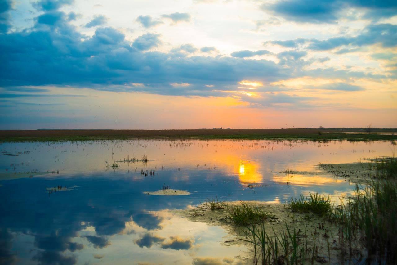 Delta Neajlovului, minunea naturală de lângă București